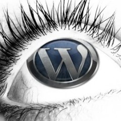 Are You Getting the Most out of WordPress SEO?