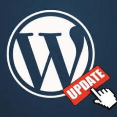 Unable to Drag and Drop Widgets After WordPress 3.5 Upgrade?