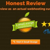 A Small Orange Review – Honest Review as a Real Customer